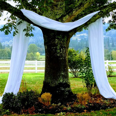Party Factory Events - Drape Backdrop for Wedding Alter